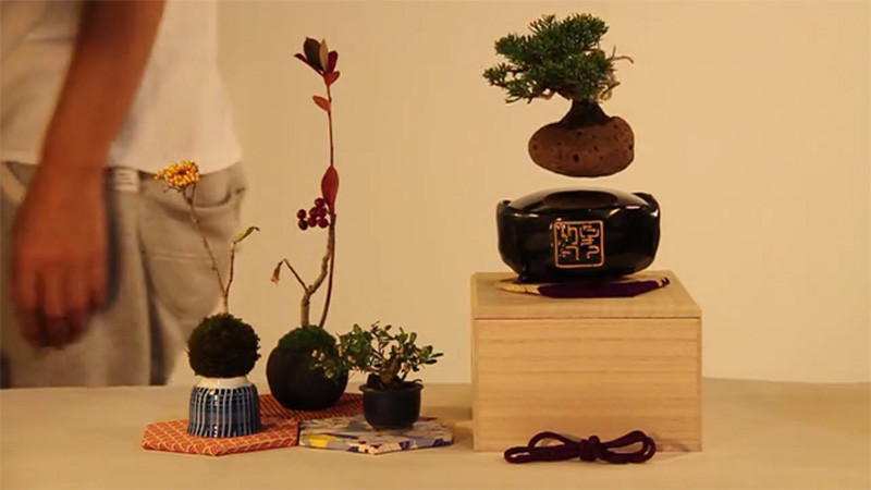 floating-bonsai_220115_03-800x450